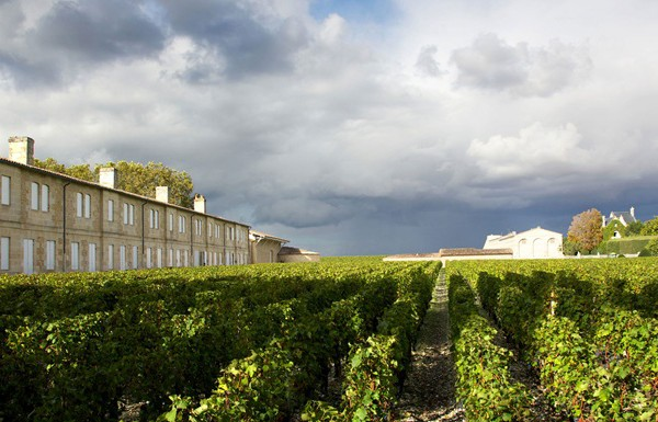 chateau-mouton-rothschild-mathieu-anglada